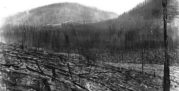 The Big Blowup. Burned timber on Rainey Creek in Lolo National Forest, Montana following 1910 fires. http://www.foresthistory.org/ASPNET/Policy/Fire/FamousFires/1910Fires.aspx