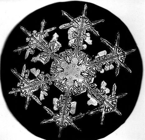 2 25 15 snowflake bentley stevens historical research associates